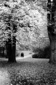 hildesheim, germany, ladies, trees, park, autumn, photo, photography, black and white,